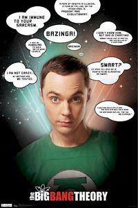 Big Bang Theory Poster Sheldon Sarcasm Quotes 22x34 TV Jim Parsons ...