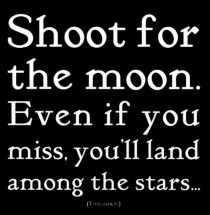 Shoot for the Moon. Even if you miss, you'll land amoung the stars.