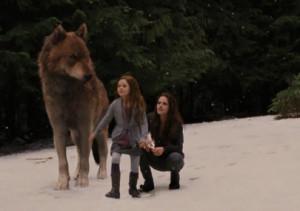 Jacob-Black-and-Renesmee-Cullen-image-jacob-black-and-renesmee-cullen ...