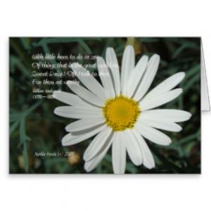 famous words daisy white daisy card series 3 $ 3 50