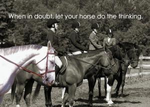 Horse Sense Quote Photograph