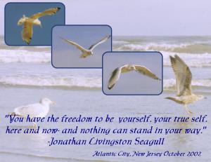 ... Page >> echoes's Scrapbooks >> Jonathan Livingston Seagull - Page 1
