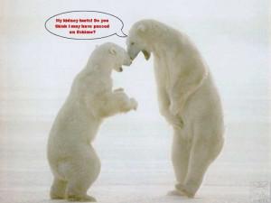 Polar Quotes