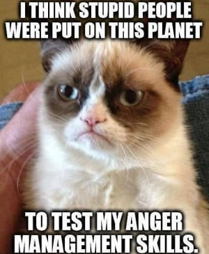 think stupid people were put on this planet to test my anger ...