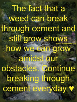 Weed pushing through the cracks of cement, diamonds forming from ...