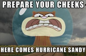 hurricane sandy funny pictures (8)