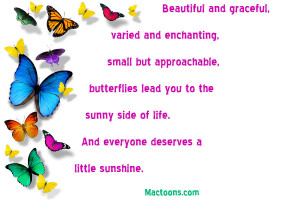 Colorful-butterflies-with-life-quote