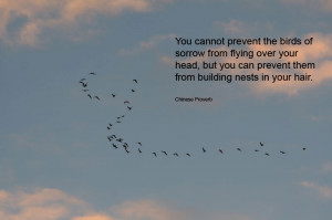 You cannot prevent the birds of sorrow from flying over your head, but ...