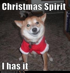 dog funny christmas dog funny christmas dog christmas dog funny ...