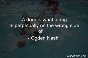door is what a dog is perpetually on the wrong side of.