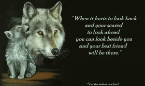 Wolves wolf poems