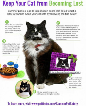 How to prevent lost cats from www.Petfinders.com.