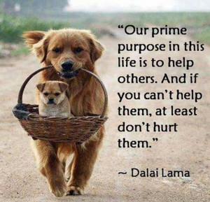The Dalai Lama on Helping Others