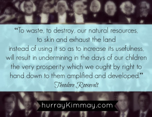 Teddy Roosevelt Quotes Presidential quotes