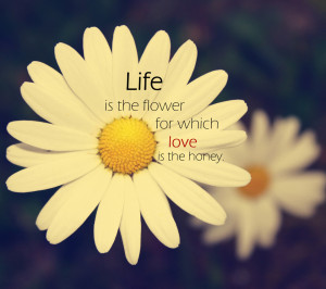 quotes,quote,aphorism,motto,maxim,flowers,blossoms,bloom,design,flikie ...