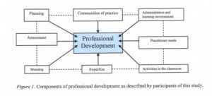 Figure 1. Components of professional development as described by ...