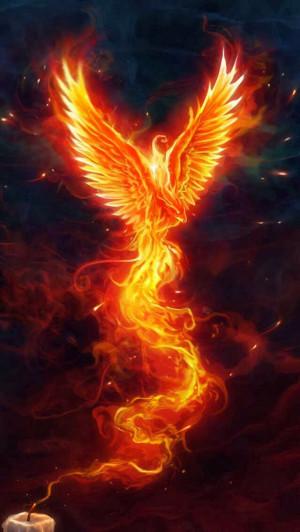 The fire bird...