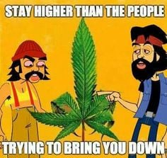 ... chong comics book weed quotes stay higher cheech and chong quotes