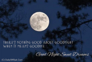 ... Nothing Good About Goodnight When It Means GoodBye ~ Good Night Quote