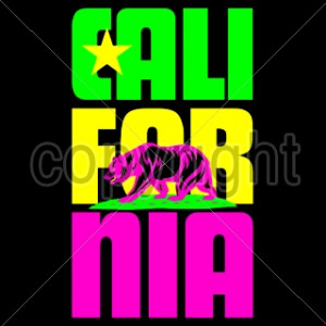 ... Funny Fashion - Funny T Shirts - Sayings Bulk -16232-8x14-california