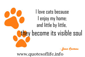 Love My Cat Quotes i love my cat quotes