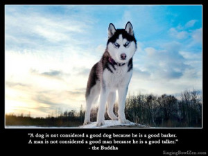 dog is not considered a good dog because he is a good barker. A man ...