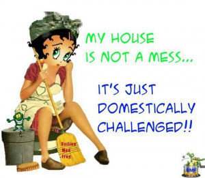 Domestically Challenged!!