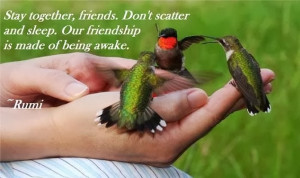 Friendship Quotes, Stay Together, Rumi Quotes on Friendship