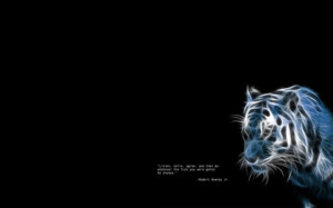 tigers quotes black background 1920x1200 wallpaper Mammals tigers HD ...