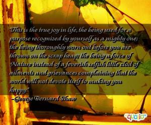 Quotes On Joy