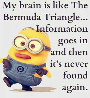 Funny Minions Sayings Minions Quotes Sayings