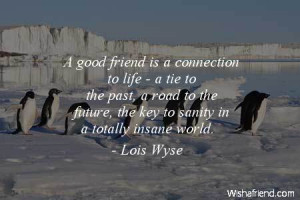 bestfriend-A good friend is a connection to life - a tie to the past ...