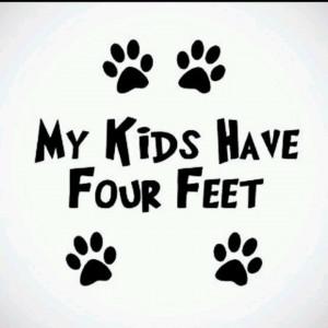 My fur babies ...Bella,Mikey,Sookie,Captain, ....