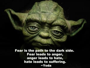 ... Leads To Anger, Anger Leads To Hate, Hate Leads To Suffering. ~ Yoda