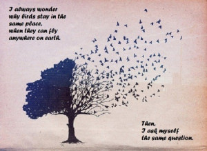 Favorite quotes, sayings, birds, place