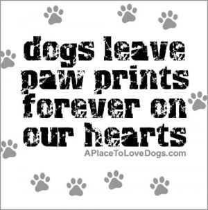 Dogs leave paw prints forever on our hearts