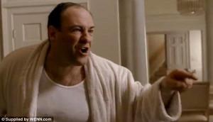Famous: Portraying mob boss Tony Soprano on 'The Sopranos' made James ...