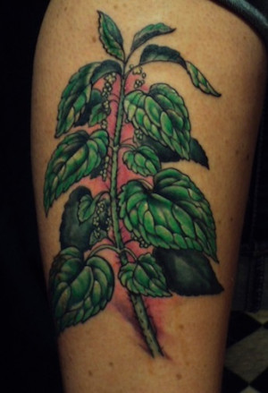 Shawn Hebrank Minnesota Tattoo Artist Out Of This Nettle Danger