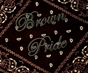 Brown Pride Image Graphic Code