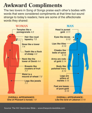 Bible Illustration - Compliments in Song of Songs - Infographic