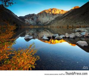 Photo by Dmitri Fomin ( Click on the image to see full size )