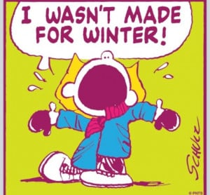 Hate Winter Quotes   Lol I hate winter !   Laughter is Good for the ...