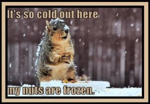 It's so cold