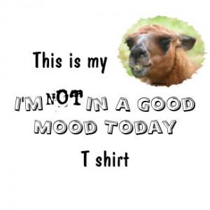 angry_llama_bad_mood_humorous_funny_t_shirt-p235967773546300091ah7vm ...