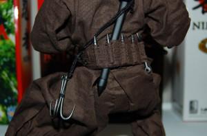Thread: Ignite 1/6 Ninja!!!