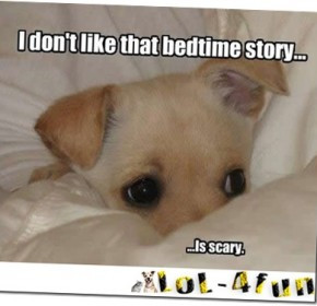 funny cats and dogs quotes funny cats and dogs quotes