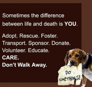 Sometimes The Difference Between Life And Death Is You. Adopt. Rescue ...