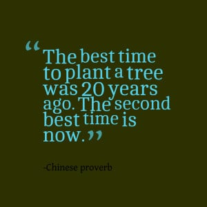 ... best time to plant a tree was 20 years ago the second best time is now