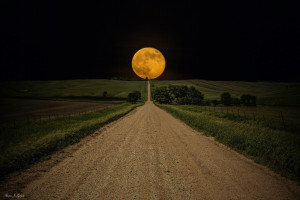 HQ] Road to Nowhere, Harvest Moon #25068