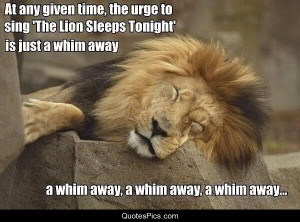 whim away, A whim away – lion king
